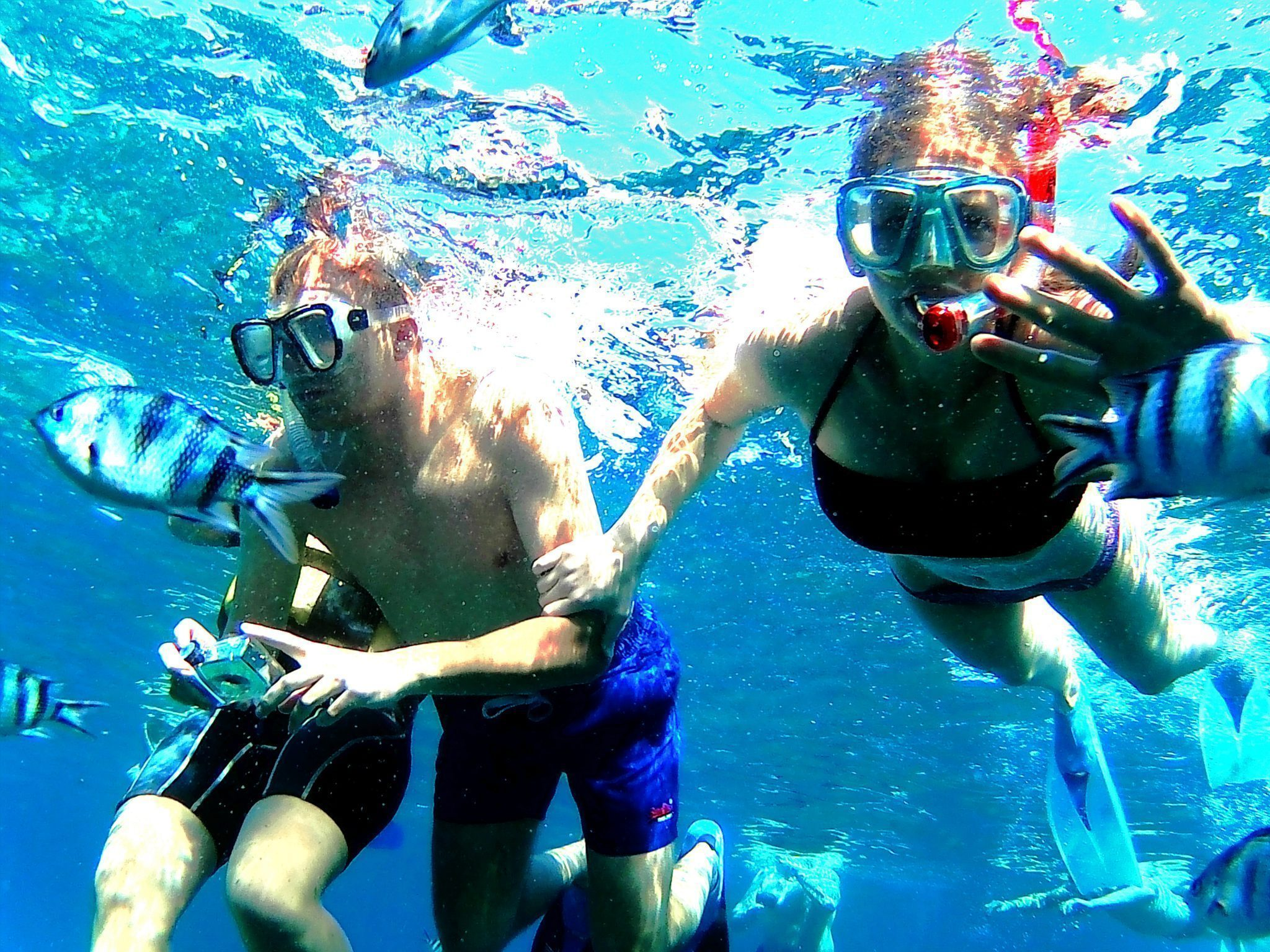 Snorkeling tour private boat